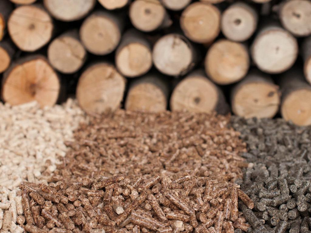 Enerqos caldaie a biomassa legnosa